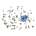 iPhone 5S Complete Screw Set with 2Pcs Gold Bottom Screw